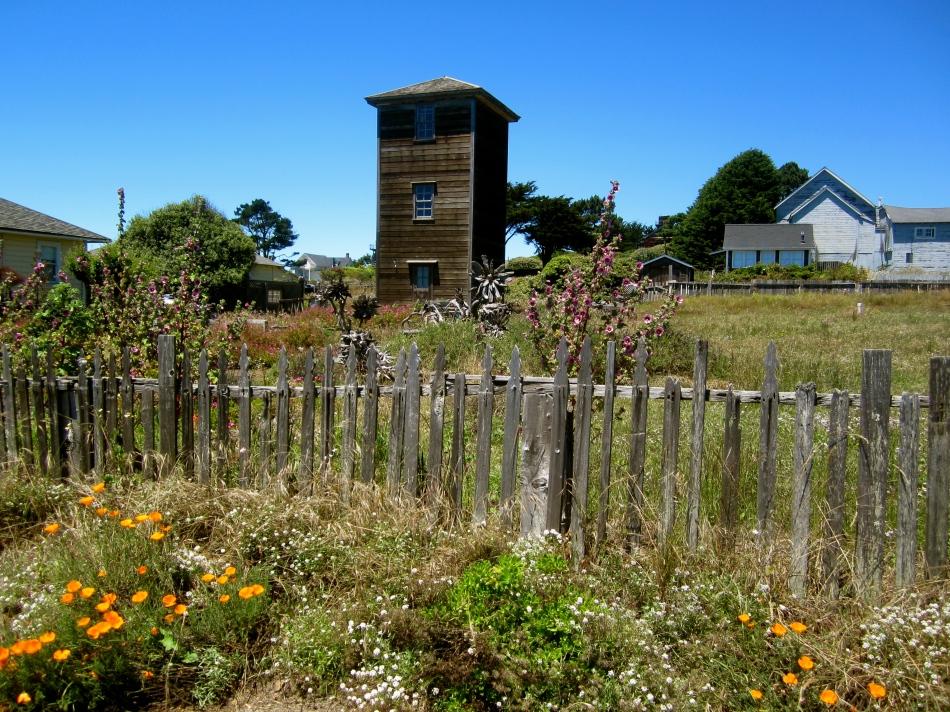 Sonoma County 2013 226