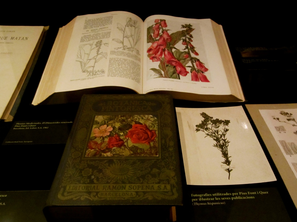 Ancient records on medicinal plants.