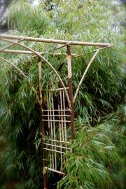 Arbor adds structure in the garden