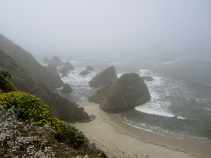 Early morning at Bodega Head, California