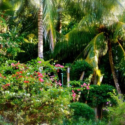 Florida 2010 Sabine 025