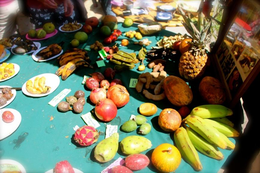 Tropical Fruit Tasting Table