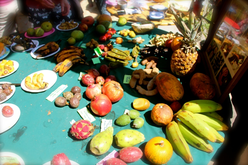 Tropical Fruit Tasting Table