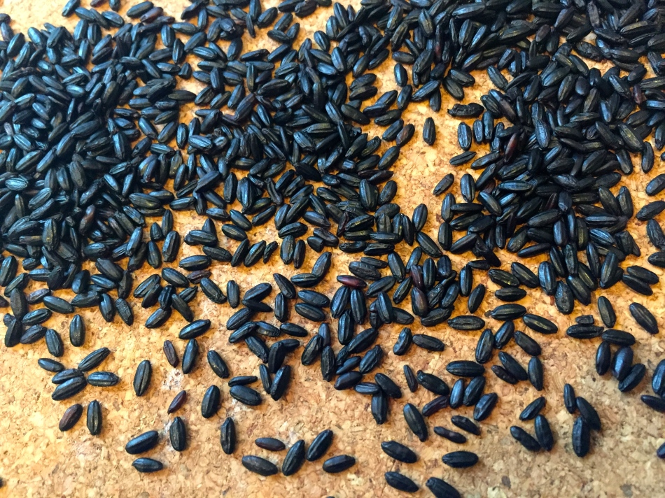 Beautiful Forbidden Black Rice was only for the emperors in ancient China!